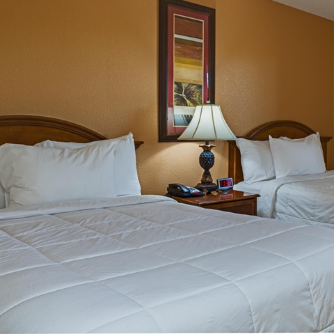 Image of Superior Suite at our afforable Kissimmee hotel